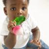 jouet-dentition-radis-oli&carol